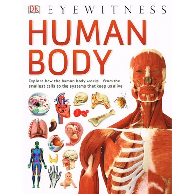 Large eyewitness human body cover 800x800