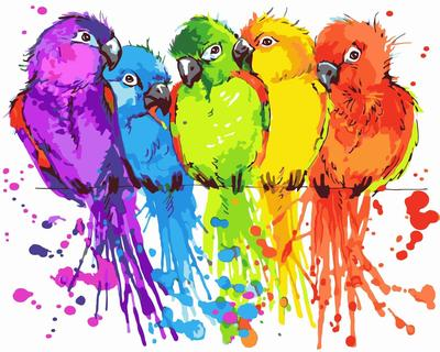 Parrot DIY Paint By Numbers Canvas