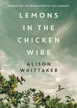 Homepage_lemons_in_the_chicken_wire