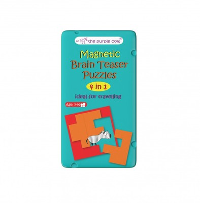 Magnetic Brain Teaser Puzzles