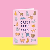 Homepage_et-cats-10