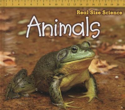 ANIMALS REAL SIZE SCIENCE