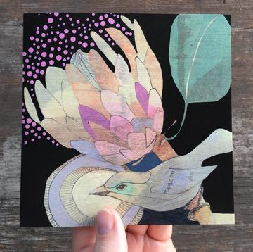 Spotted Pardalote & Protea card