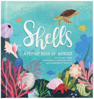 Shells - A Summer Pop-Up Book