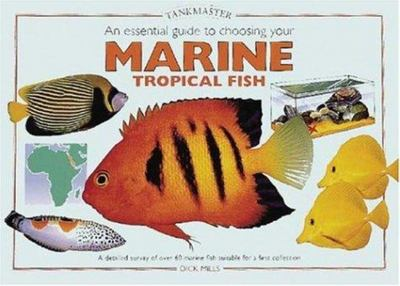 An Essential Guide to Choosing Your Marine Tropical Fish