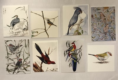 Large_bird_cards_-_copy