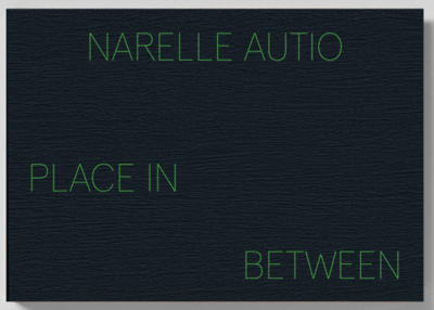 Narelle Autio - The Place in Between