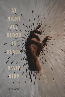 At Night All Blood Is Black - A Novel