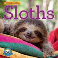 Original Sloths Wall Calendar 2021