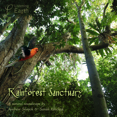 Rainforest Sanctuary (CD) - Andrew Skeoch, Sarah Koschak