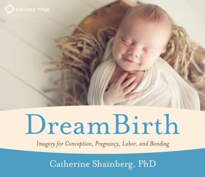 Dreambirth: Imagery for Conception...