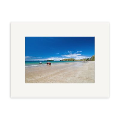Opito Bay RP254 Matted