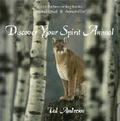 Discover Your Spirit Animal (CD)