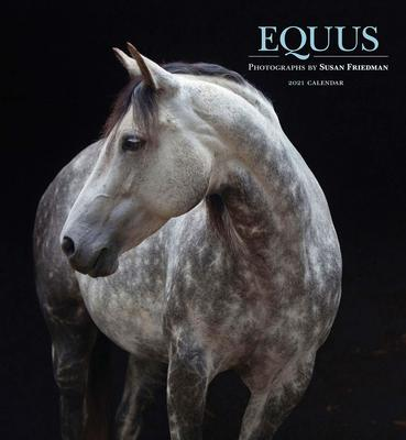 Wall Calendar - 2021 Equus: Photographs by Susan Friedman