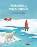 Penguins and Polar Bears - Getting to Know the Arctic and Antarctic