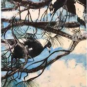 Magpies On High