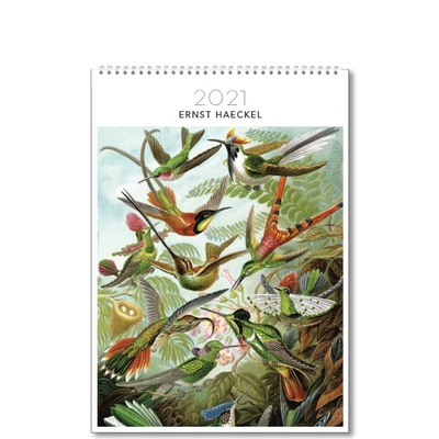 2021 Medium Calendar - Ernst Haeckel