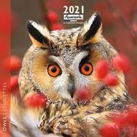 Homepage owls cal