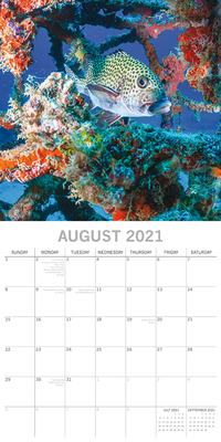 16 Month Calendar 2021: Under the Sea