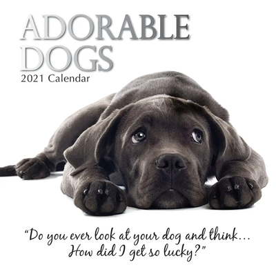 16 Month Calendar 2021: Adorable Dogs