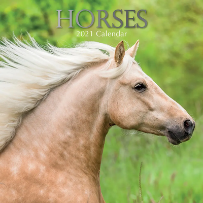 16 Month Calendar 2021: Horses