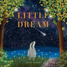 Large little dream 9780648679288