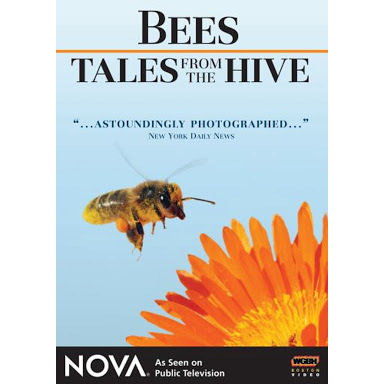 Bees - Tales From the Hive (DVD)