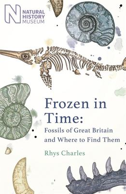 Frozen in Time: Fossils of Great Britain and Where to Find Them