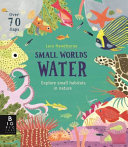 Water (Small Worlds)