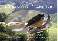 Homepage the country camera for web page 1