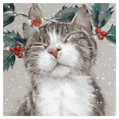 Xmas Cards Nipping at Your Nose pk6 - XC000057 (AM-XCP-0057)
