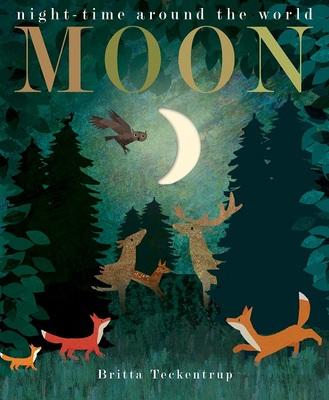 Moon: Night-Time Around the World