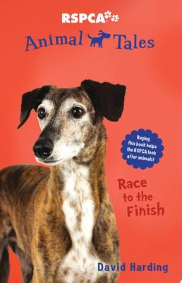 Animal Tales #8 Race to the Finish