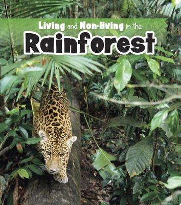 LIVING AND NON LIVING IN THE RAINFOREST