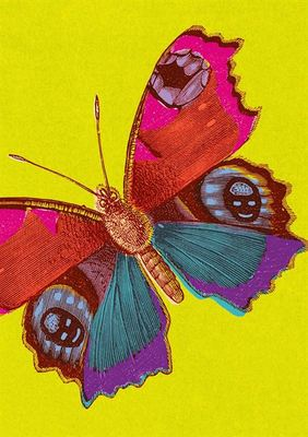 Card - Peacock Butterfly JT2872