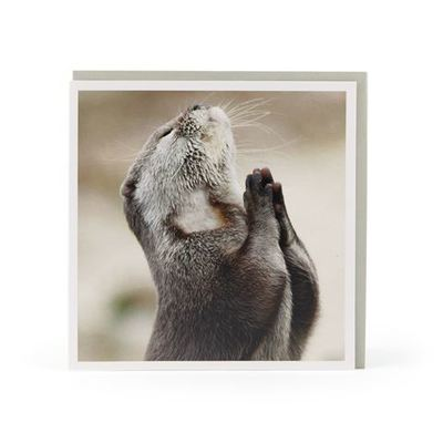 Card - Praying Otter 196