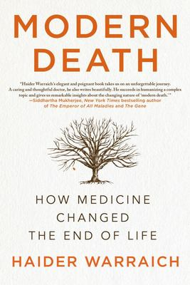 Modern Death - How Medicine Changed the End of Life