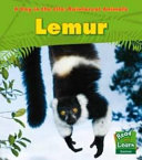 LEMUR A DAY IN THE LIFE RAINFOREST ANIMALS