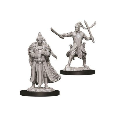 Male Elf Paladin - D&D Nolzurs Marvelous Unpainted Miniatures