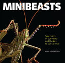 Minibeasts - True Rulers of Our World and the Key to Our Survival