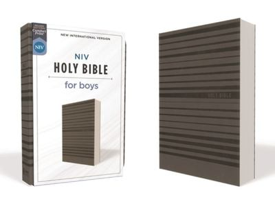 NIV Holy Bible for Boys, Soft Touch Edition, Comfort Print [Grey]