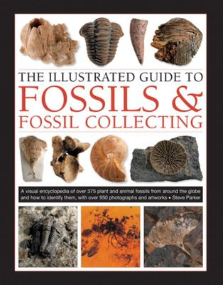 The Illustrated Guide to Fossils  Fossil Collecting