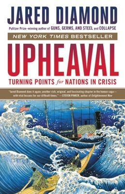 Upheaval - Turning Points for Nations in Crisis