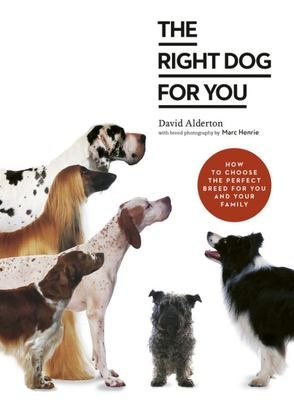 The Right Dog for You - How to Choose the Perfect Breed for You and Your Family