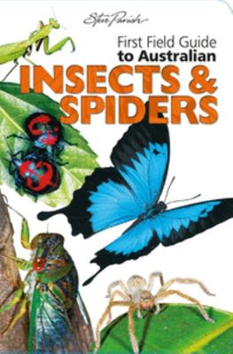 Insects & Spiders - First Field Guides