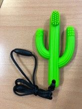 Homepage chew toy green cactus