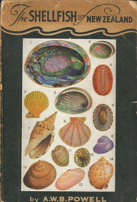 The Shellfish of New Zealand