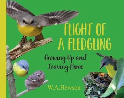 Flight of a Fledgling - Growing up and Leaving Home