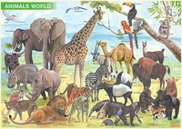Homepage qpa animals of the world