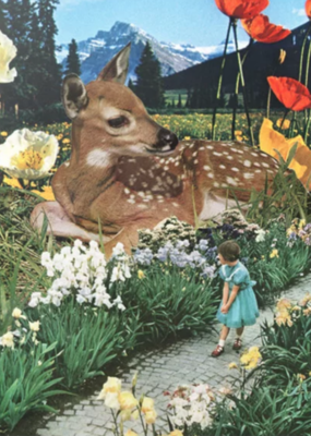Dear Doe Greeting Card